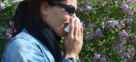 En 30 años, la mitad de la población será alérgica