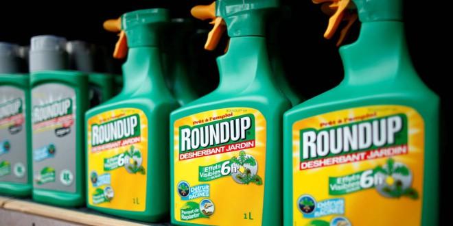 Cinco años más de glifosato en Europa: estos 18 países dan luz verde al polémico herbicida