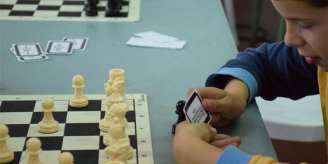 Más de 7.700 estudiantes de Granada se benefician de la enseñanza y la práctica del ajedrez en el ámbito escolar gracias al programa aulaDjaque