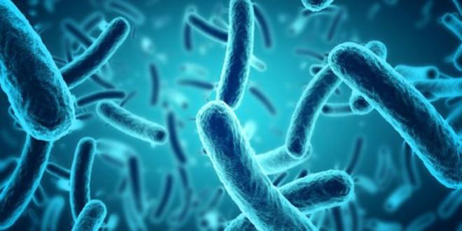 Las superbacterias matan 30 veces más que los accidentes de tráfico