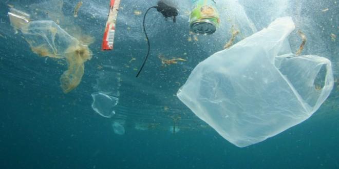 El Parlamento Europeo propone la prohibición del plástico de un solo uso