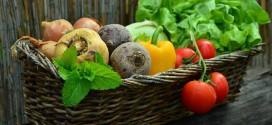 Si todos los habitantes del planeta Tierra quisieran comer saludable, no habría verduras y frutas para todos