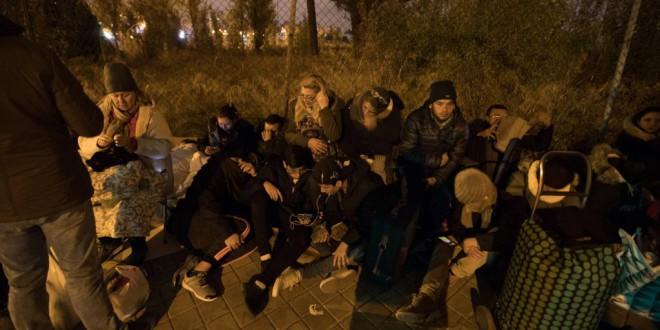 España solo reconoce una de cada cuatro solicitudes de asilo