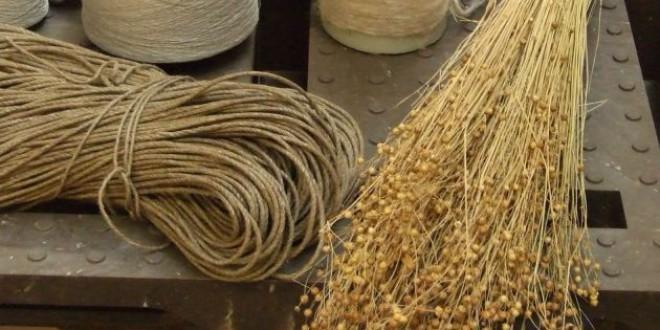 El lino, el cáñamo y el coco, los nuevos sustitutos del plástico