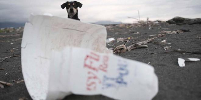 Se dispara la invasión del plástico