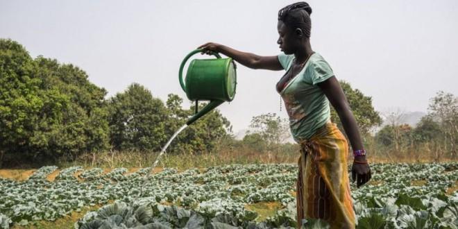 Las mujeres son la clave para lograr un mundo sin hambre ni pobreza