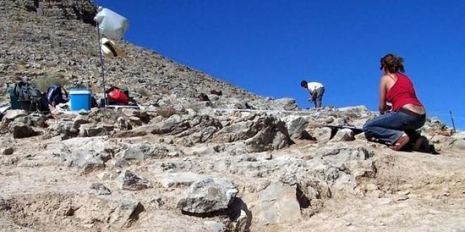 ATARFE: Reconocen al arqueólogo que descubrió los primeros restos de Medina Elvira