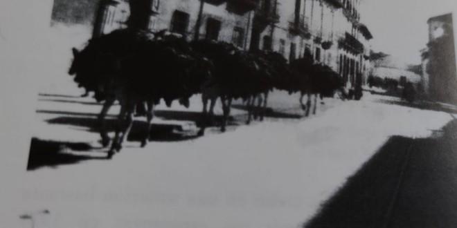 «Cien años de historia» por  Fuencisla Moreno Rueda