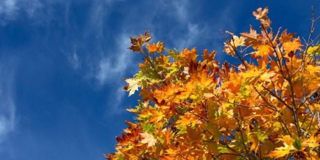 El otoño empieza este martes a las 15:31 horas
