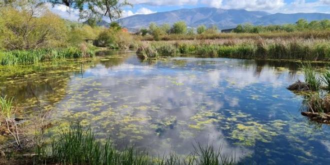 Laguna de Padul y Charca de Suárez, dos joyas naturales granadinas que debes conocer