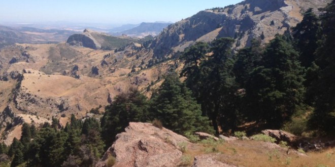 Sierra de las Nieves se convierte en el decimosexto Parque Nacional del país