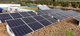 Fotovoltaica: mejor menos trámites que más euros en solar