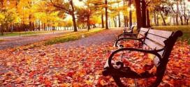 El otoño llegará HOY miércoles 22 de septiembre a las 21.21 horas