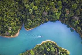 Capturar y reutilizar CO₂: otro modo de frenar el cambio climático